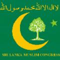 Medium_congress
